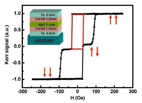 钴铁硼隧道结中的超快退磁动力学研究进展