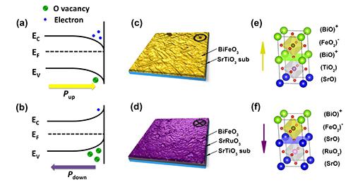 铁电极化调制的磁性金属/氧化物异质界面的热稳定性研究