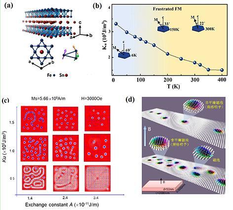 Kagome晶格阻挫磁体中的多拓扑态宽温区磁性斯格明子