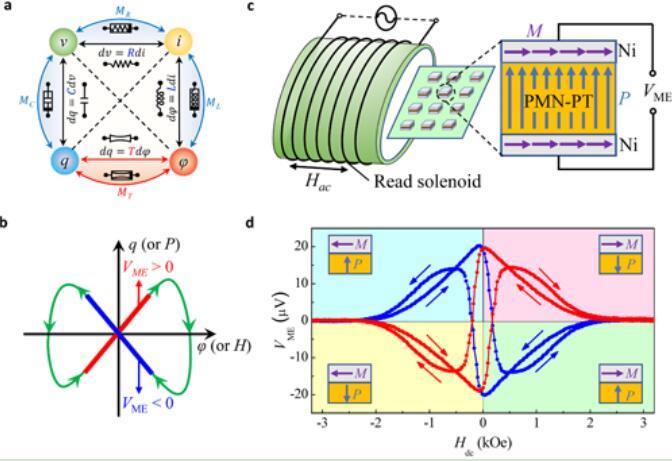 基于忆耦器实现神经突触可塑性和神经网络模拟